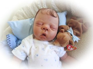 Reborn Baby Doll Sweet Baby Boy Larry So Realistic with Human Hair