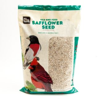 All Living Things™ Safflower Seed for Birds   Treats   Bird
