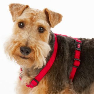 Top Paw® Luxurious Nylon Dog Harnesses   Harnesses   Collars, Harnesses & Leashes