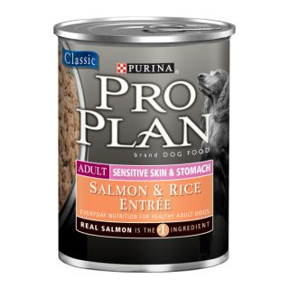 Pro Plan Sensitive Skin and Stomach Salmon and Rice Formula Dog Food   Food   Dog